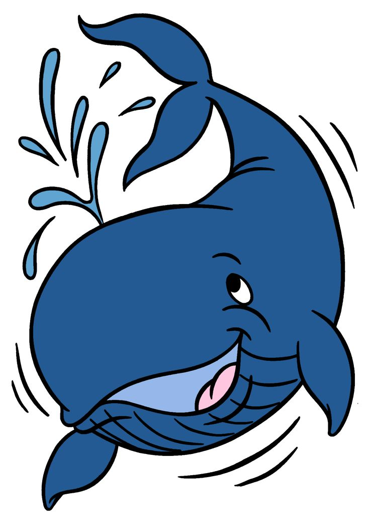 Humpback Whale Clipart