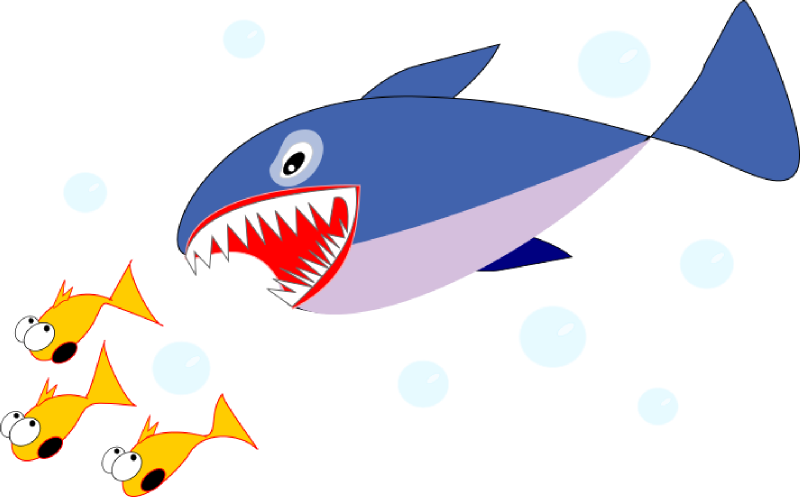 800x497 Shark Clipart, Suggestions For Shark Clipart, Download Shark Clipart
