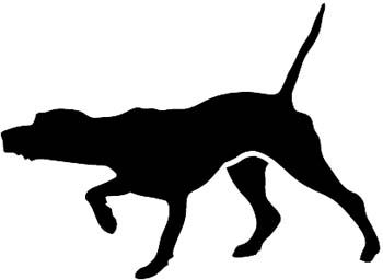 350x256 German Shorthaired Pointer On Point Clip Art