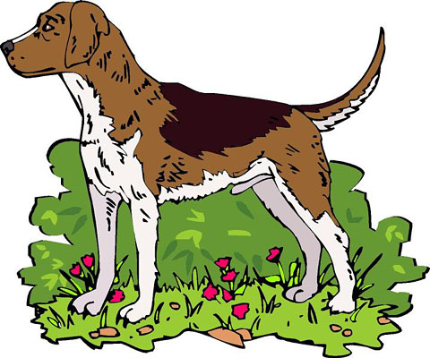 480x400 Clipart Images Of Hunting Dogs