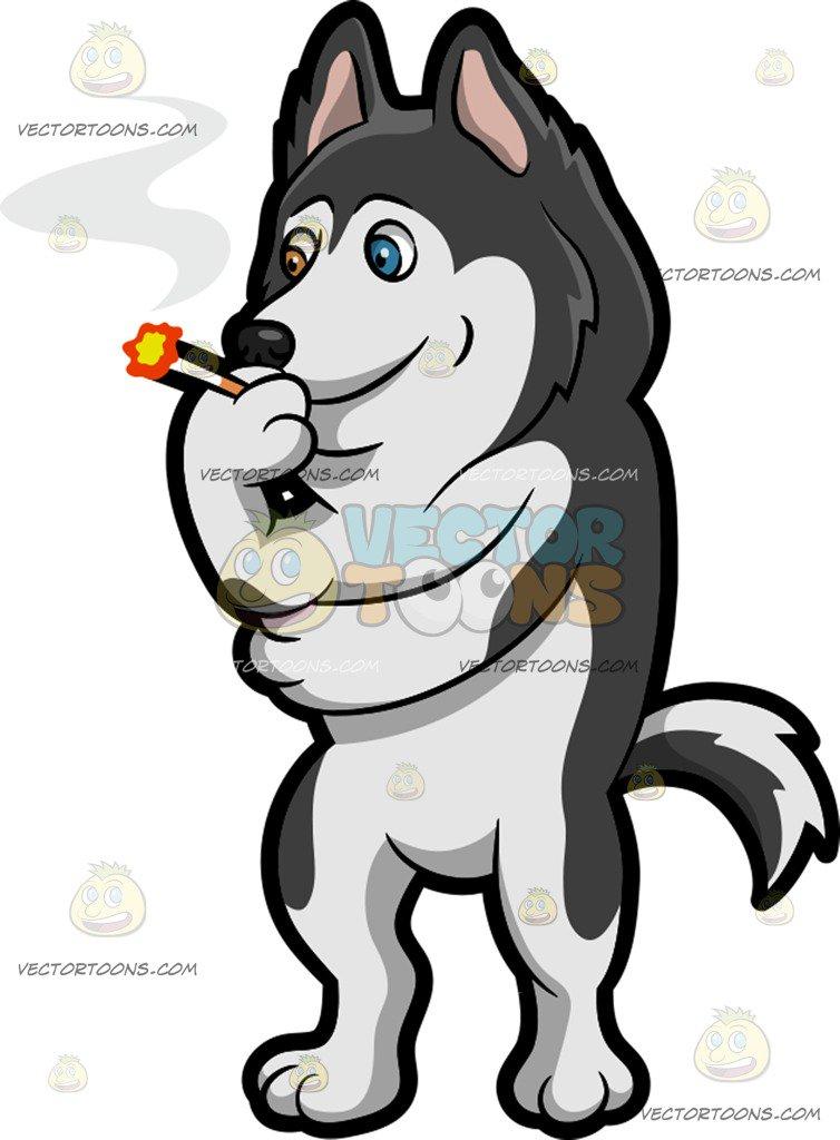 754x1024 A Siberian Husky Smoking A Cigarette Cartoon Clipart
