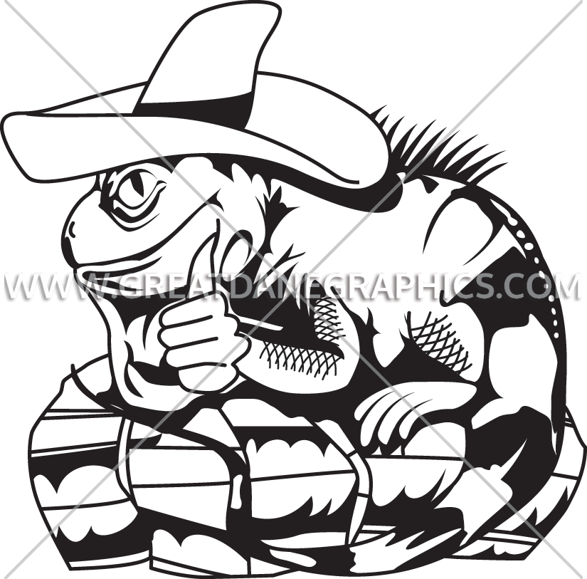 825x813 Sombrero Iguana Production Ready Artwork For T Shirt Printing