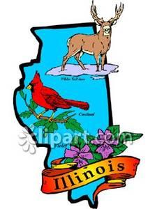 225x300 Bird, Animal, And Flower Of Illinois