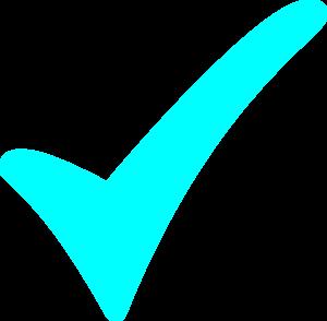 300x294 Aqua Checkmark Clip Art