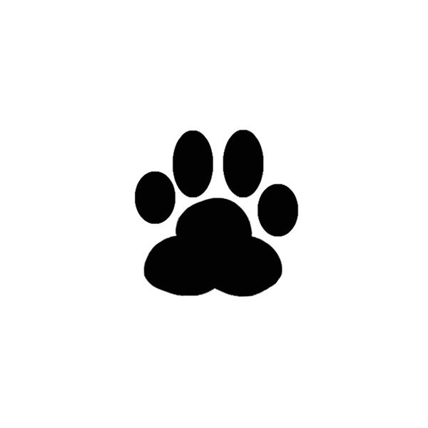 Image Of Dog Paw