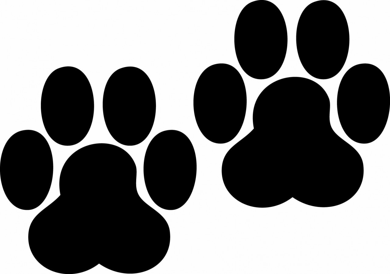 1280x899 Paw Print Tattoos On Dog Paw Prints Scroll Clipart 3 4 2