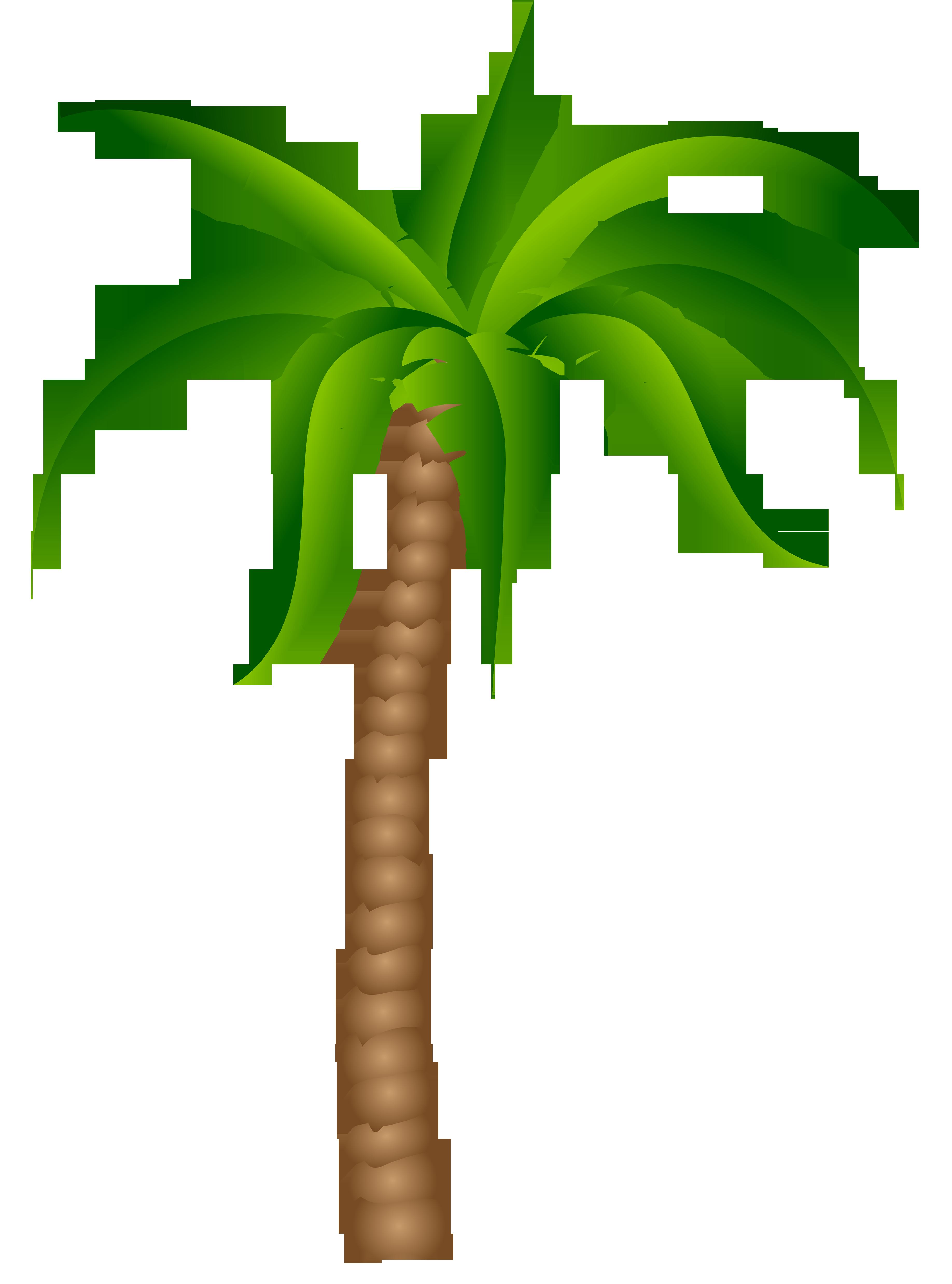 3672x4952 Palm Tree Palm Silhouette Clipart