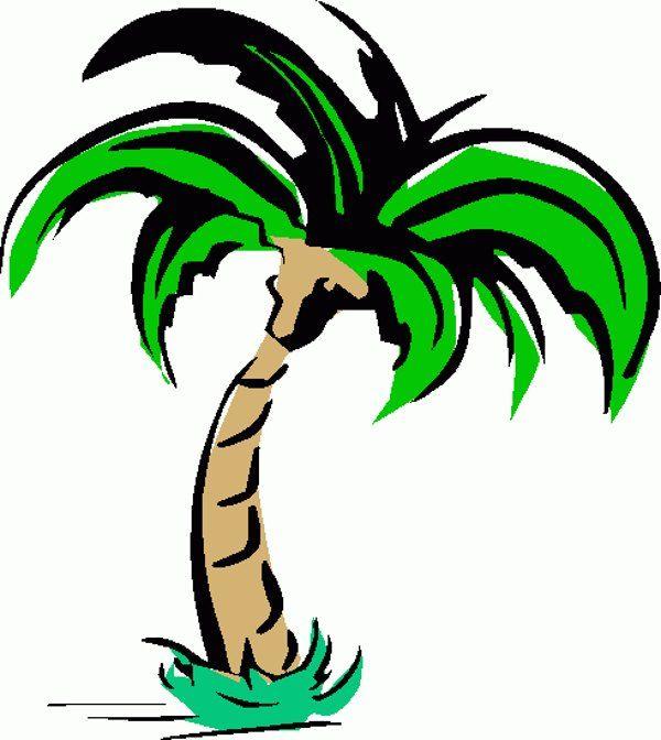600x672 Drawn Palm Tree Clipart