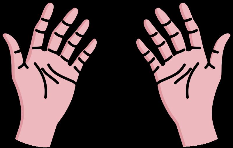 800x508 Hands Clip Art