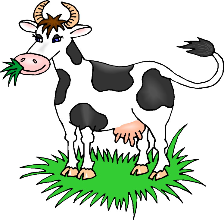 744x732 Cattle Clipart Animal Food