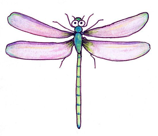 Images Of A Dragonfly