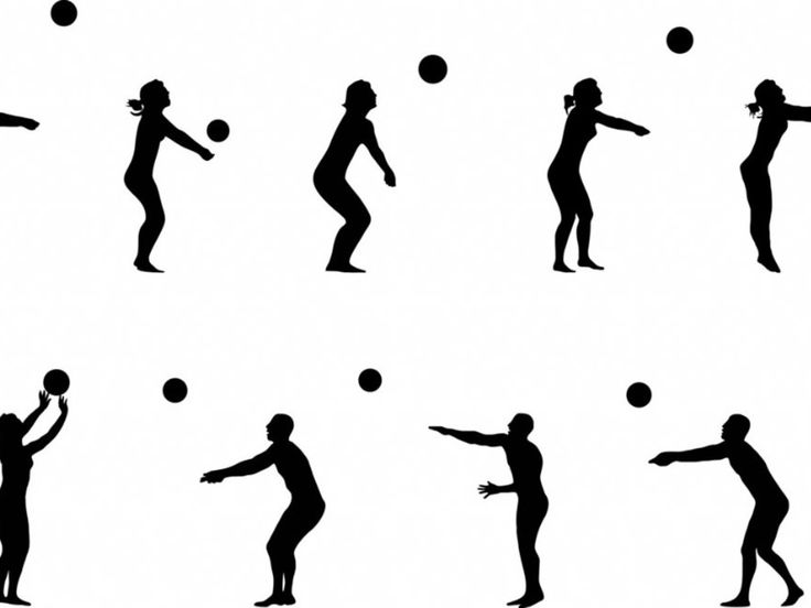 736x552 The Best Images Of Volleyball Ideas Volleyball