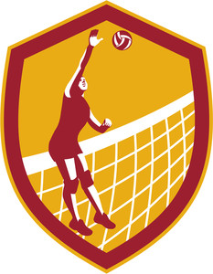 233x300 Volleyball Player Spiking Blocking Ball Royalty Free Stock Image