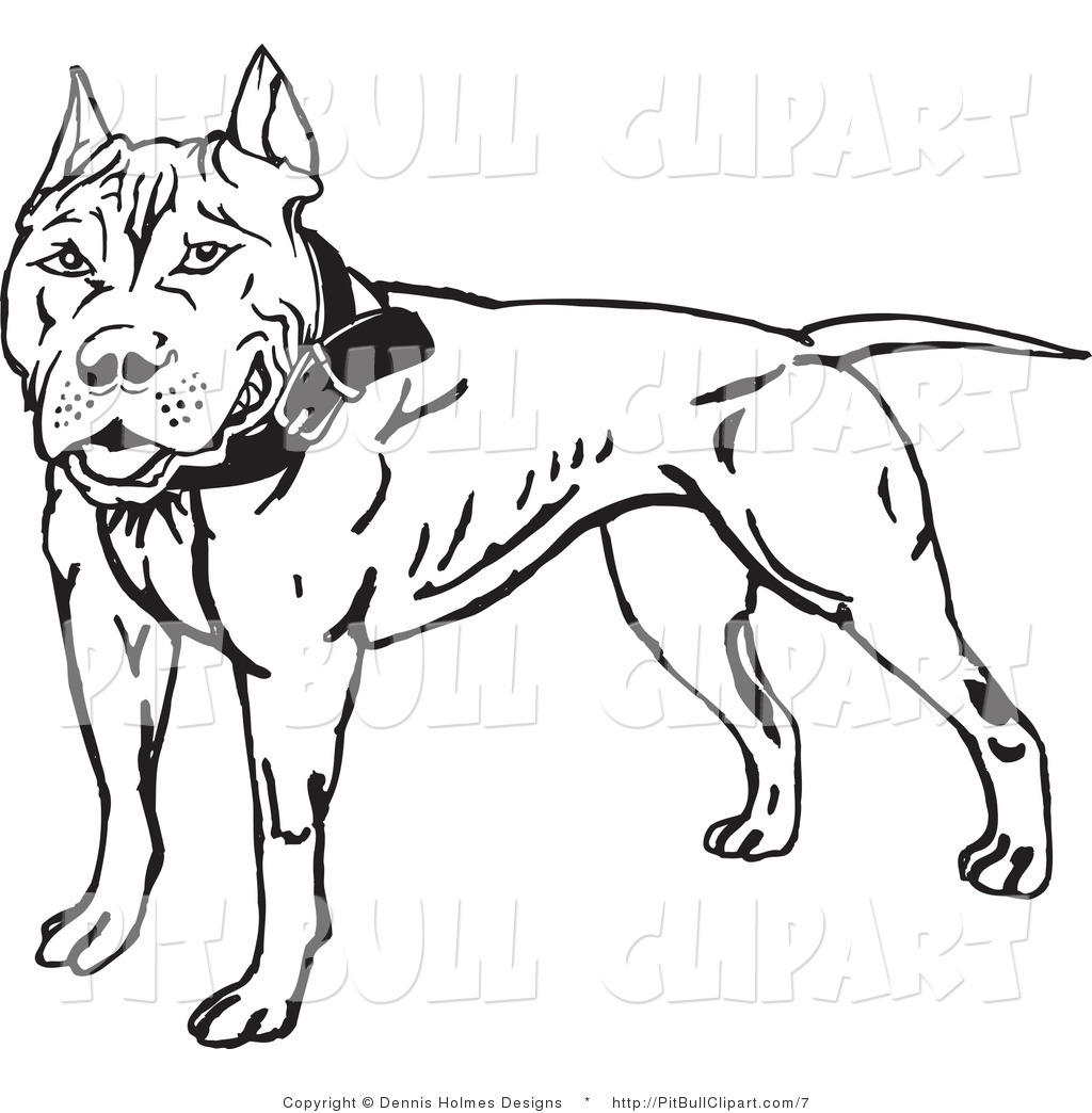 1024x1044 Clip Art Of A Black And White Pit Bull By Dennis Holmes Designs