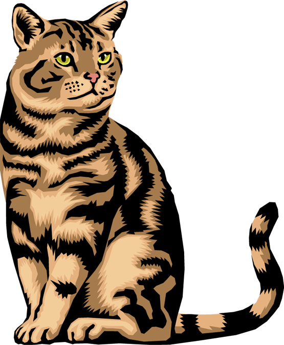 555x675 Free Clipart Of Cat