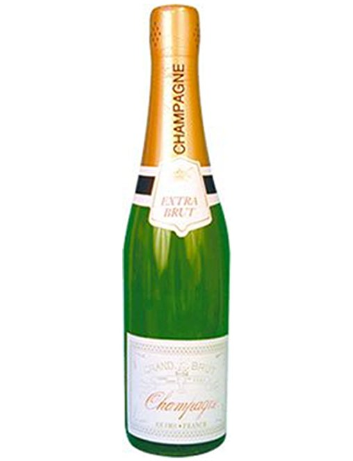 508x664 Champagne Bottle 30 Blow Up Inflatable Bottles For Party