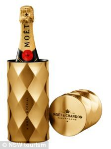 224x300 87 Best Classy Champagne Bottles Images Accessories