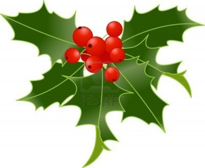 830x681 Holly Clip Art Cliparting With Regard To Christmas Holly Clipart