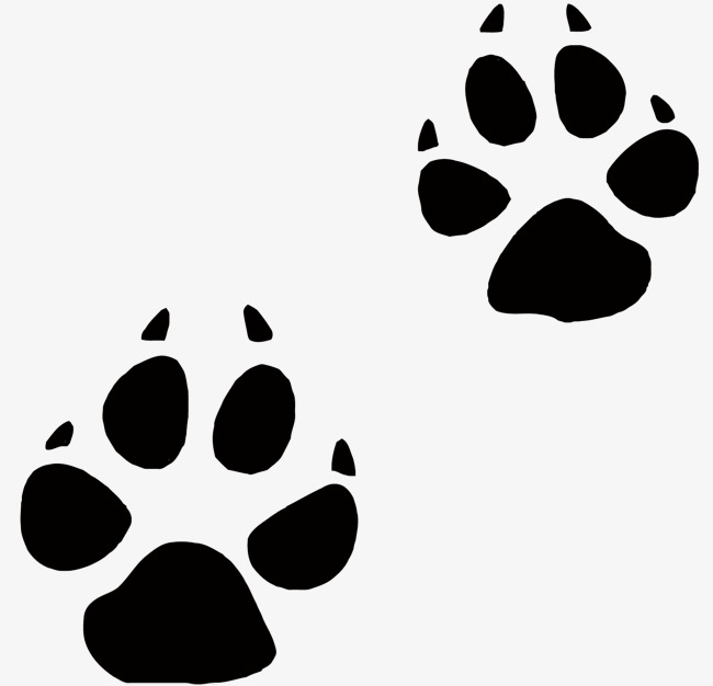 650x626 Vector Dog Claws, Dog Paws, Pet, Dog Claw Vector Png And Vector