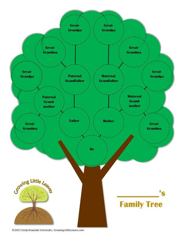 618x800 3 Gen Family Tree Template. Five Generation Familytree Chart
