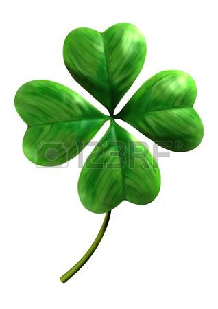 318x450 Four Leaf Clover Images Amp Stock Pictures. Royalty Free Four Leaf