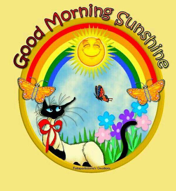 564x611 Sunshine Good Morning