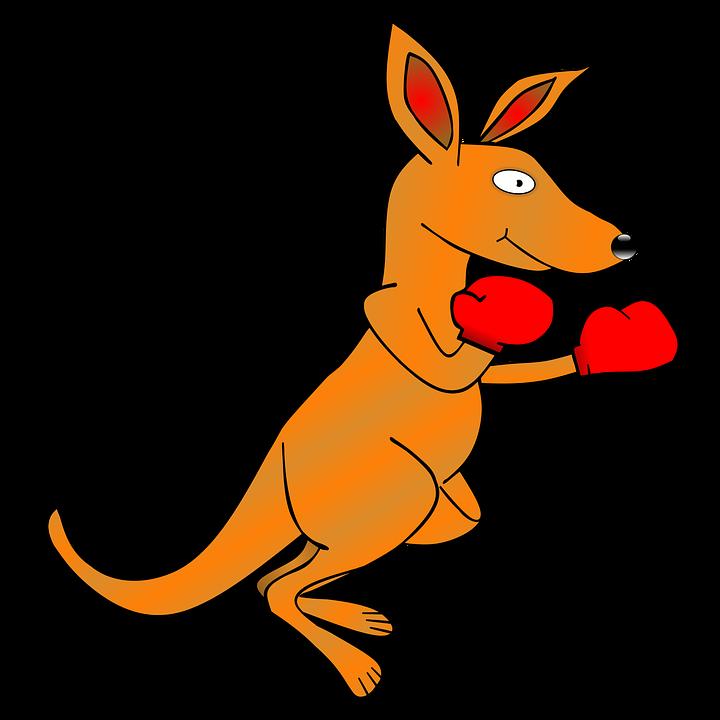 720x720 Boxing Gloves Free Illustration Kangaroo Clip Art Ing Gloves Image