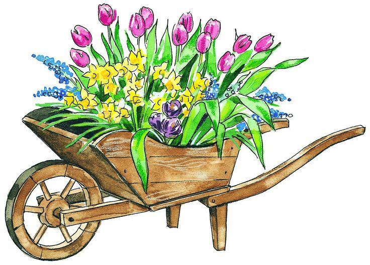 736x528 May Flowers Clip Art 1 Kaufman County Republican Women