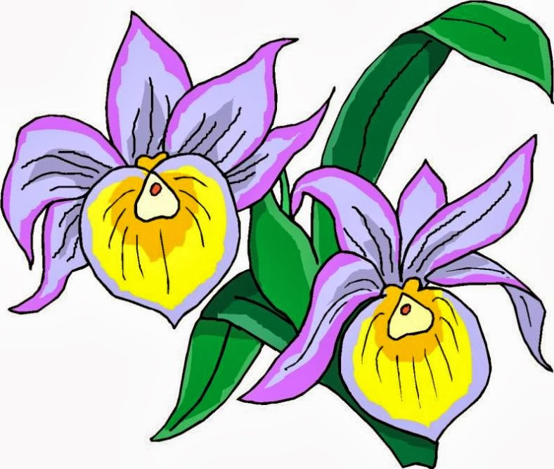 788x667 Purple Flower Clipart May Flower