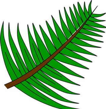 Images Of Palm Sunday Free Download Best Images Of Palm Sunday On