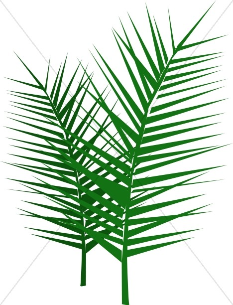 468x612 Leafy Palm Branches Palm Sunday Clipart
