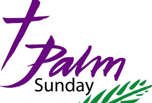 520x353 Palm Sunday Passion Sundayficial Website