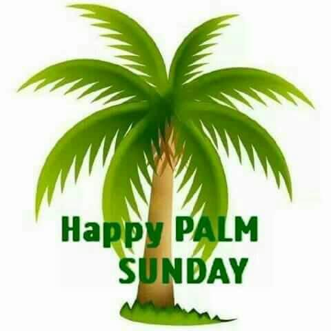 480x480 Palm Sunday 2017 The Story Behind And Date Of The Pre Easter