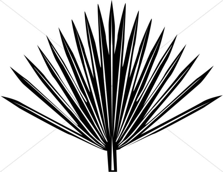 776x600 Single Radiating Palm Frond Palm Sunday Clipart