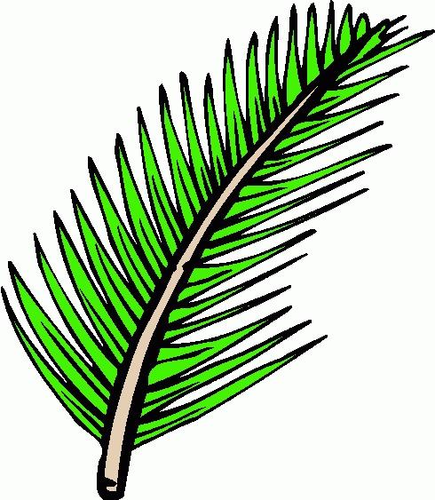 490x563 60 Best Palm Sunday Images Death, Children Church