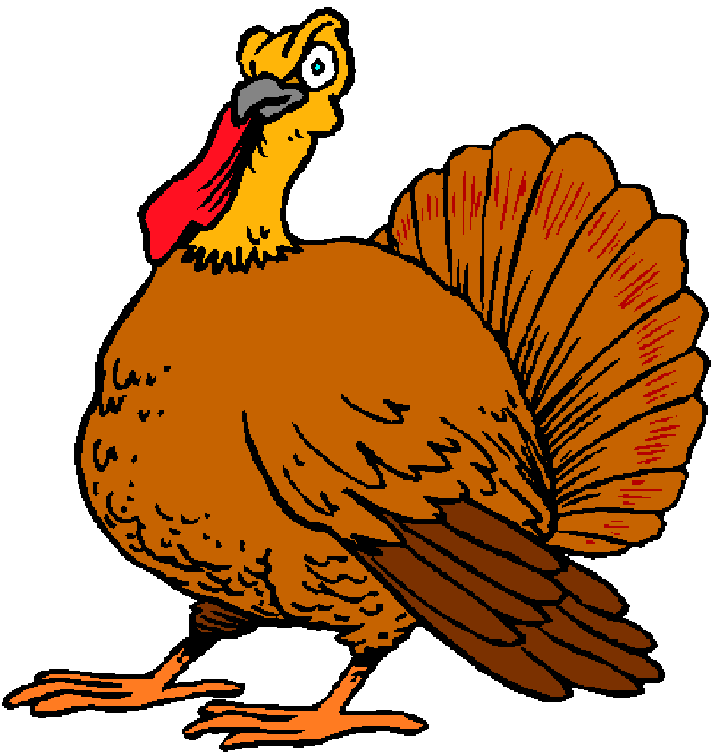 800x842 Pictures Of Cartoon Turkeys For Thanksgiving