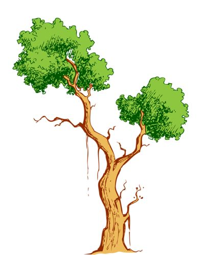 Images Of Tree Branches Clipart
