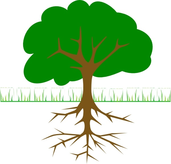 600x575 Tree Branches And Roots Clip Art Free Vector In Open Office