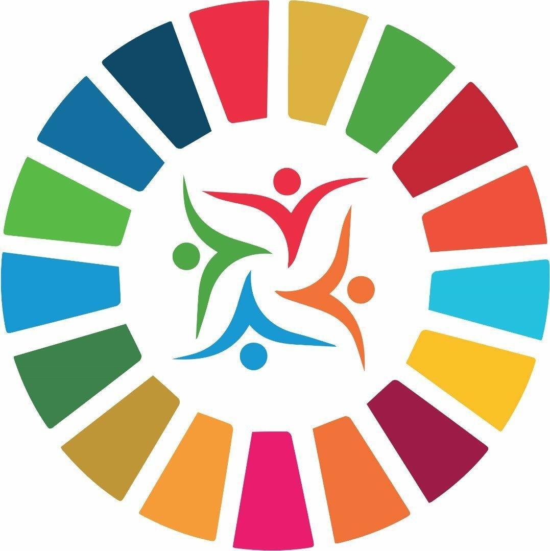 1077x1079 International Mentorship Amp Volunteerism Summit Linkedin