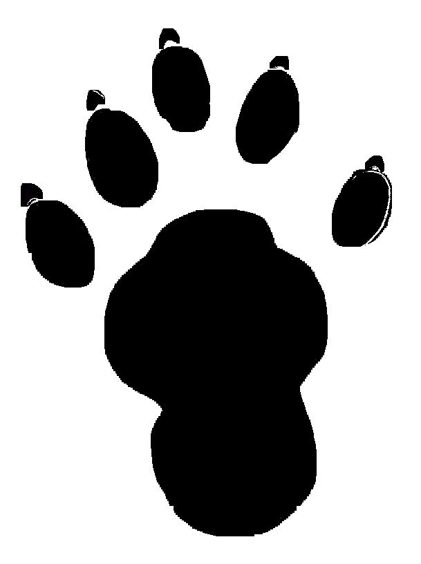 609x816 Image