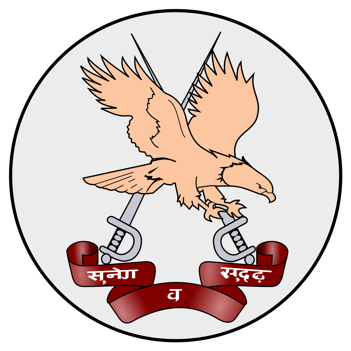 1200x1200 Army Aviation Corps (India)