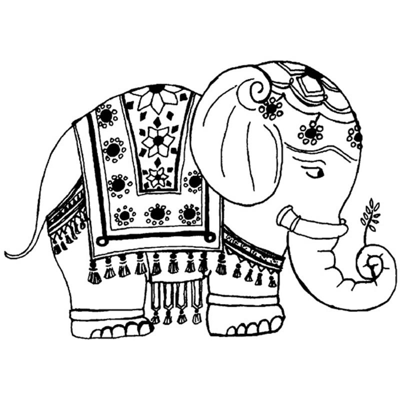800x800 Asian Elephant Clipart Coloring Page