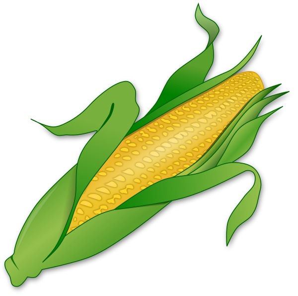 600x595 Corn Clipart Clip Art Of A Sweet Yellow Ear Of Corn The Cob
