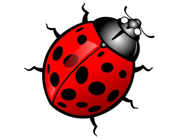 600x470 Bug Clip Art Free Clipart Images
