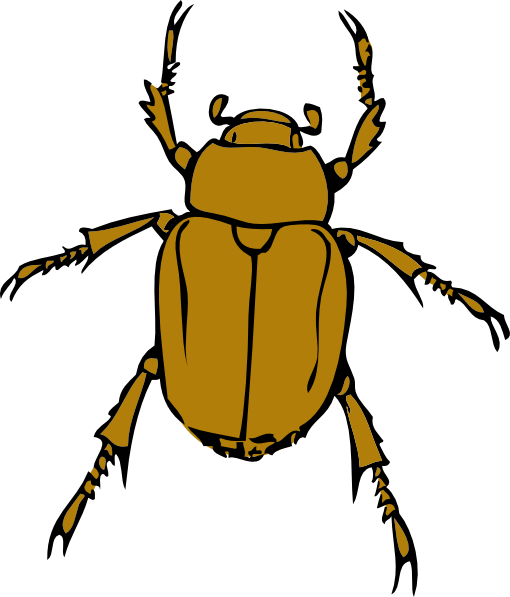 510x597 Insect Clipart Free Clipart Images