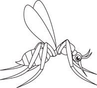 195x178 Black And White Insect Clipart
