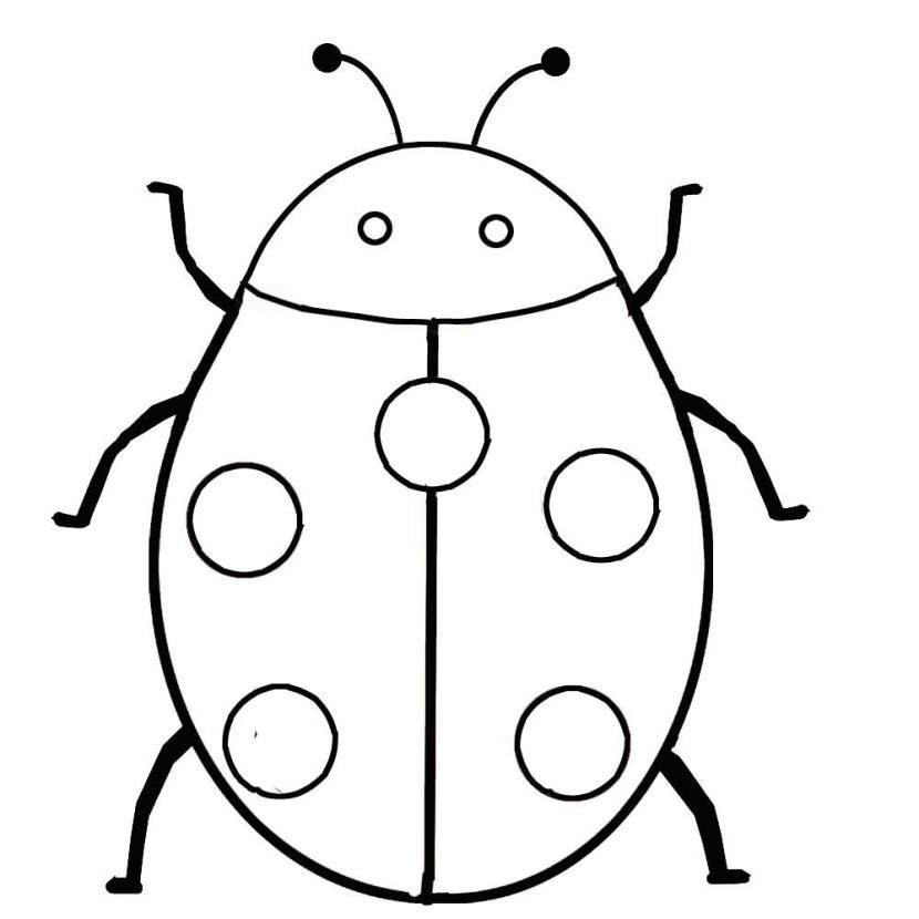 830x830 Ladybug Outline 9 Clip Art 2