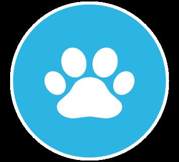 354x320 Pet Insurance Club Care Insurance