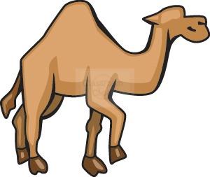 300x253 Camel Clipart Camel