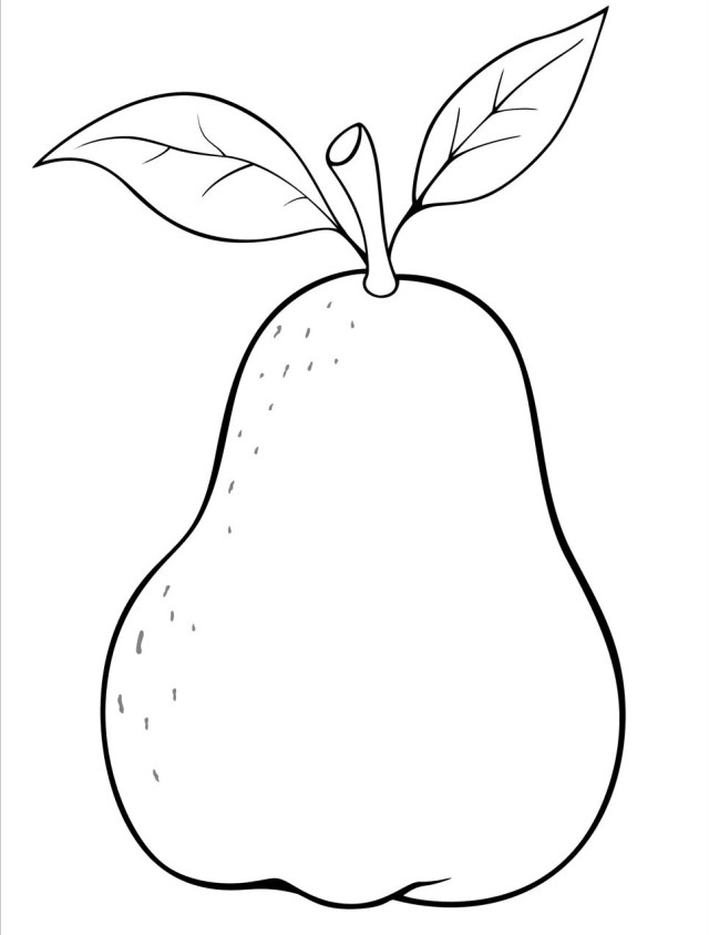 640x844 Pear Clipart Coloring